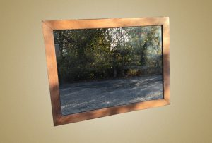 2018-11-06 Mirror oak large view of hedge